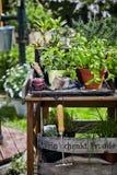 Table de travail de jardin avec les herbes culinaires mises en pot photographie stock libre de droits