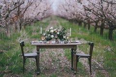 Table de vacances dans le verger de floraison Images stock