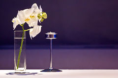 Table decor. Luxury restaurant decor with plants and a candlestick Stock Image