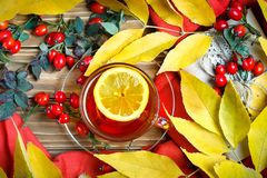 The table, decorated with autumn leaves, berries and fresh tea. Autumn. Autumn background. Stock Photos