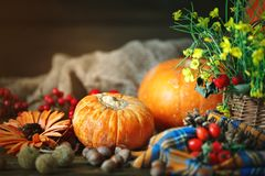 The table decorated with flowers and vegetables. Happy Thanksgiving Day. Autumn background. The table decorated with flowers and vegetables. Harvest holiday Royalty Free Stock Photography