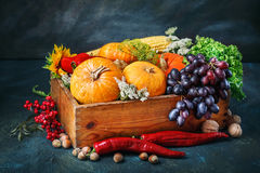 The table, decorated with vegetables and fruits. Harvest Festival,Happy Thanksgiving. Autumn background royalty free stock image