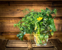 Table decoration with green Garden Vegetables Stock Photos