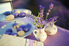 Table decoration in lavender flowers. Stock Photos