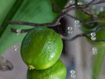 Table decoration with a lime Stock Image