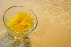 Table decoration. Luxury table decoration in yellow Stock Photography
