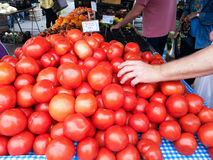 Table Display of Red Tomatoes Stock Photo