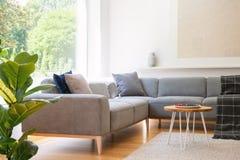 Table en bois à côté de divan faisant le coin gris dans le salon W intérieur image libre de droits