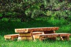 Table en bois avec des bancs dans une forêt de pin Images stock