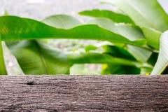 Table en bois avec le fond vert de feuille photo stock