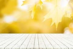 Table en bois blanche de perspective sur le dessus au-dessus du natur de feuille d'érable de tache floue Photo libre de droits
