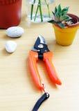 Table en bois d'outils de jardinage Photographie stock libre de droits