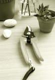 Table en bois d'outils de jardinage Images libres de droits