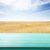 Table en bois de conseil devant le champ du blé sur le fond d'été Préparez pour des montages d'affichage de produit Photos libres de droits