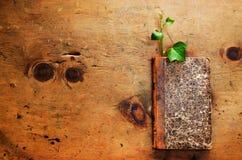 Table en bois de vintage avec le livre et la pousse Images stock
