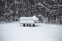 Table en bois et banc couverts de neige en parc en hiver Image stock