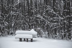 Table en bois et banc couverts de neige en parc en hiver Images stock