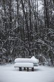 Table en bois et banc couverts de neige en parc en hiver Photo stock
