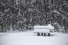 Table en bois et banc couverts de neige en parc en hiver photographie stock