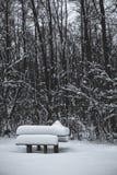 Table en bois et banc couverts de neige en parc en hiver photos stock