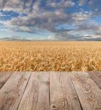 Table en bois vide de plate-forme au-dessus de champ de blé photos stock