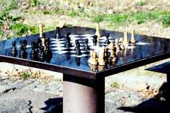 Table et pion d'échecs en parc, pour les aînés actifs Images libres de droits