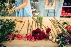 Table with flowers of different varieties in shop royalty free stock image