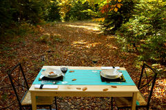 Table in forest. Romance, table in deep forest Royalty Free Stock Photography