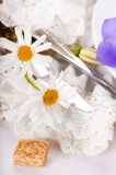 Table fork and knife in a napkin Royalty Free Stock Image