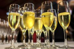 Table full of glass of white cava royalty free stock images