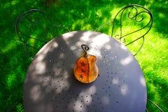 Table in the garden Stock Photos