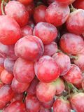 Table grape Stock Photography