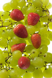 Table grapes and strawberries Stock Images