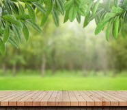Table and green leaves in garden background. Empty wood table top with Green nature background.For product display Royalty Free Stock Image