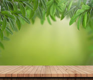 Table and green leaves in garden background. Empty wood table top with Green nature background.For product display Royalty Free Stock Photo