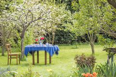 Table laid with blue earthenware in a beautiful garden Stock Photo