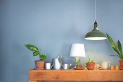 Table lamp and a small plant pot. On wood cabinet Stock Photography