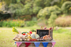 Table with locally grown vegetables Stock Photos
