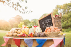 Table with locally grown vegetables Royalty Free Stock Photography
