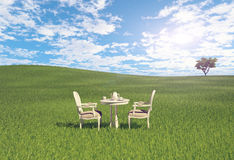 Table  on the meadow Royalty Free Stock Images