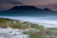 Table Mountain. From Milnerton beach with grass in the foreground Stock Photography