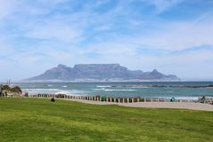 Table Mountain. Beautiful landscape view of famous wonder of the world table mountain against a blue sky with sea ocean and grass in the foreground from Big Bay Stock Photos