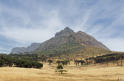 Table Mountain in Cape Town royalty free stock images