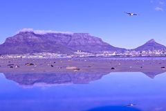 Table mountain in cape town, South Africa stock photography