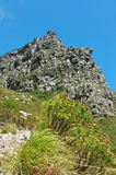Table Mountain Hiking Royalty Free Stock Image