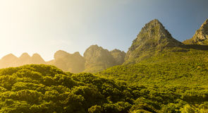 Table Mountain National Park Stock Photography