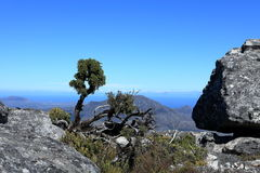 Table Mountain near Cape Town in South Africa Stock Photo