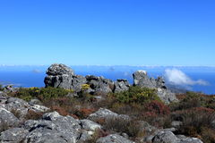Table Mountain near Cape Town in South Africa Stock Image