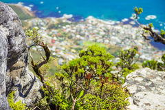 Table mountain. 7 new world wonders inside of Cape Town city Stock Image