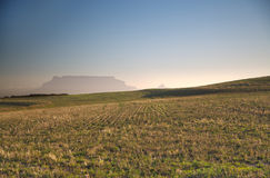 Table Mountain and peaceful green pastures Stock Photos